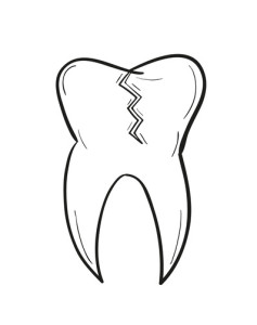 sketch of the tooth with defect on white background, isolated